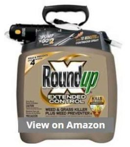 Roundup Control Weed and Grass Killer