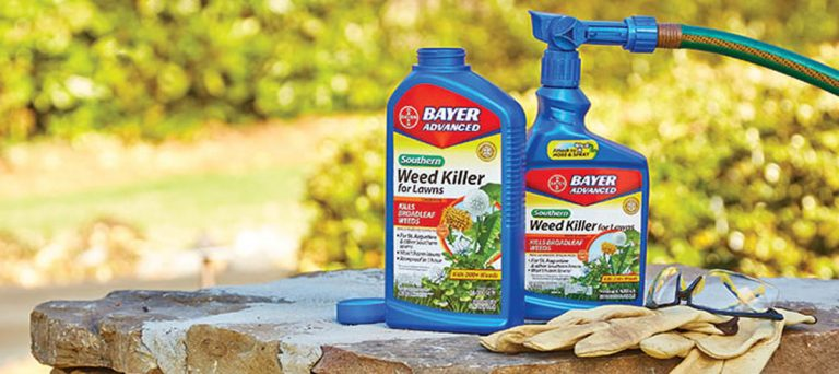 10 Best Weed Killers Review (Safe Weed Killer) 2020